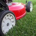 Advanced Carpet Cleaners will handle lawn maintenance and landscaping in Madison, Jackson counties in Northeast Alabama including Scottsboro, AL, and Huntsville, AL.